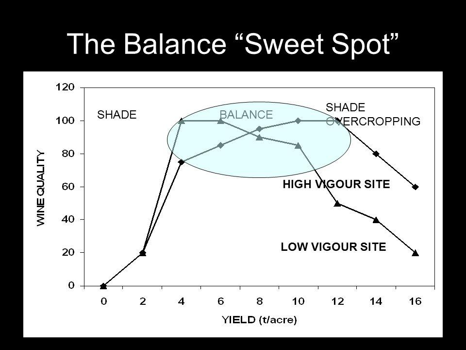 The Balance Sweet Spot SHADE OVERCROPPING BALANCE HIGH VIGOUR SITE LOW VIGOUR SITE