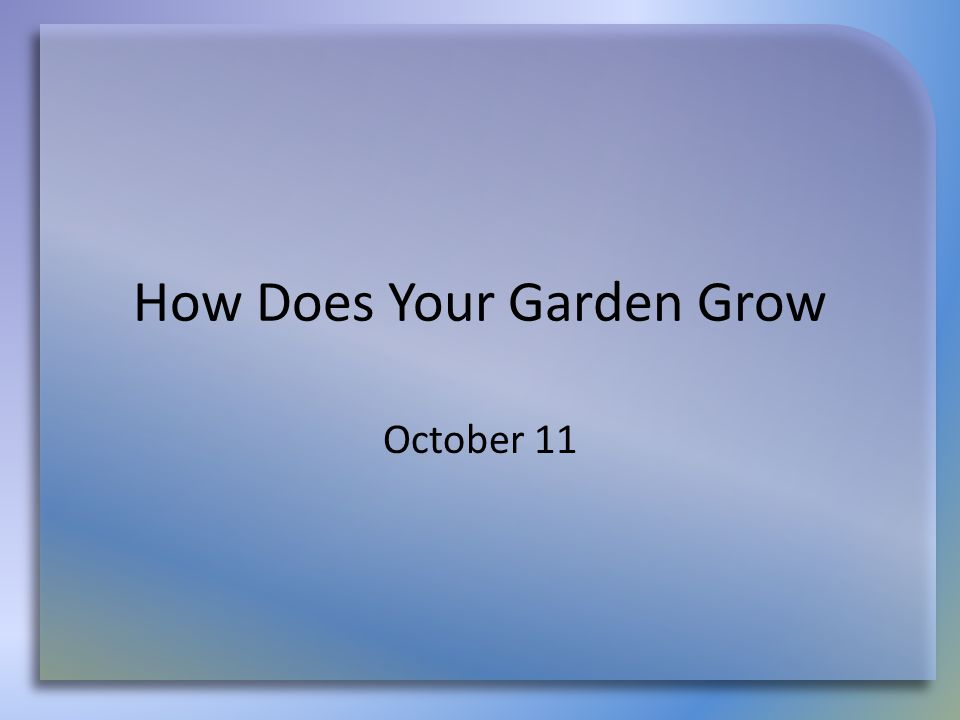 How Does Your Garden Grow October 11