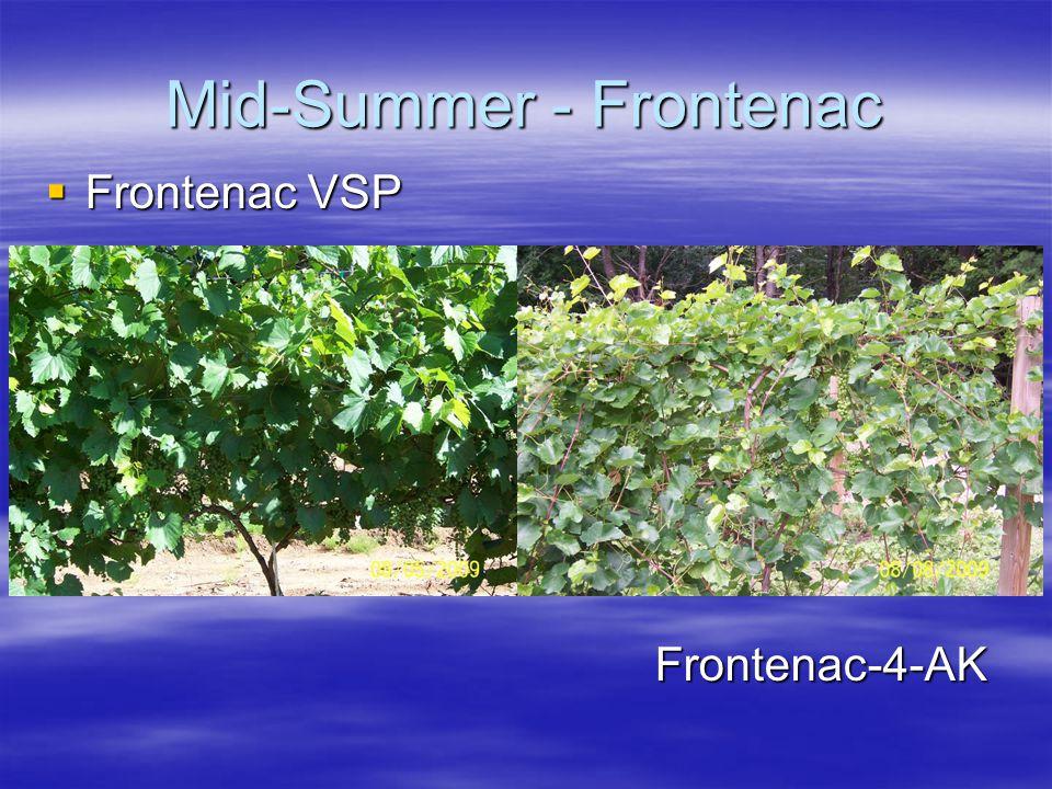 Mid-Summer - Frontenac  Frontenac VSP Frontenac-4-AK Frontenac-4-AK