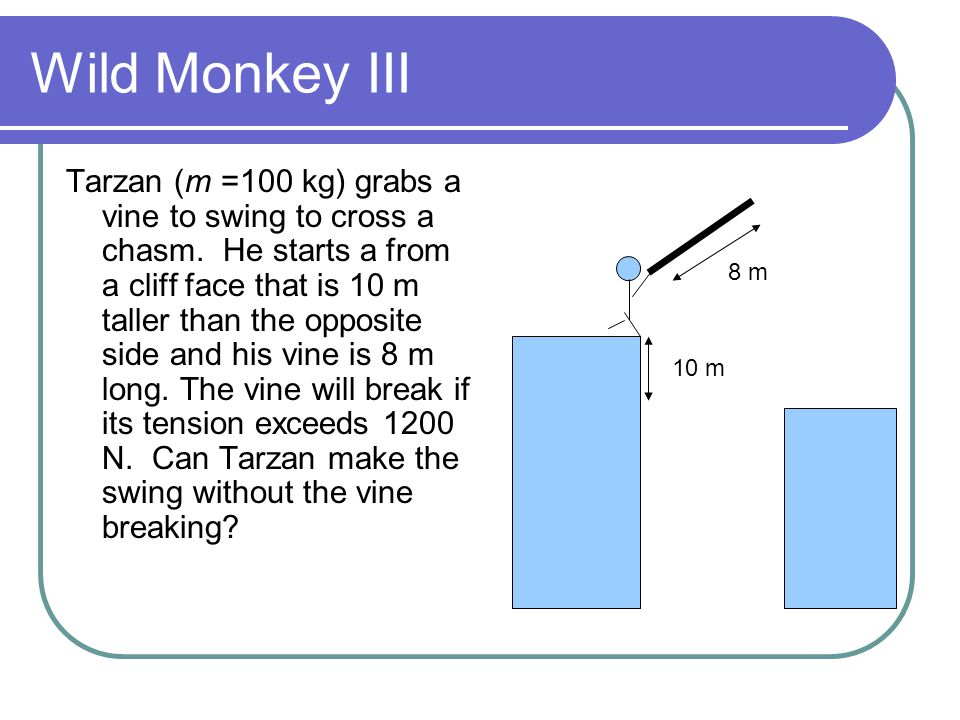 Draw a Free Body diagram At bottom of rope: Weight of Tarzan=100*9.8 =980 N Tension, T Centripetal force, Mv 2 /R