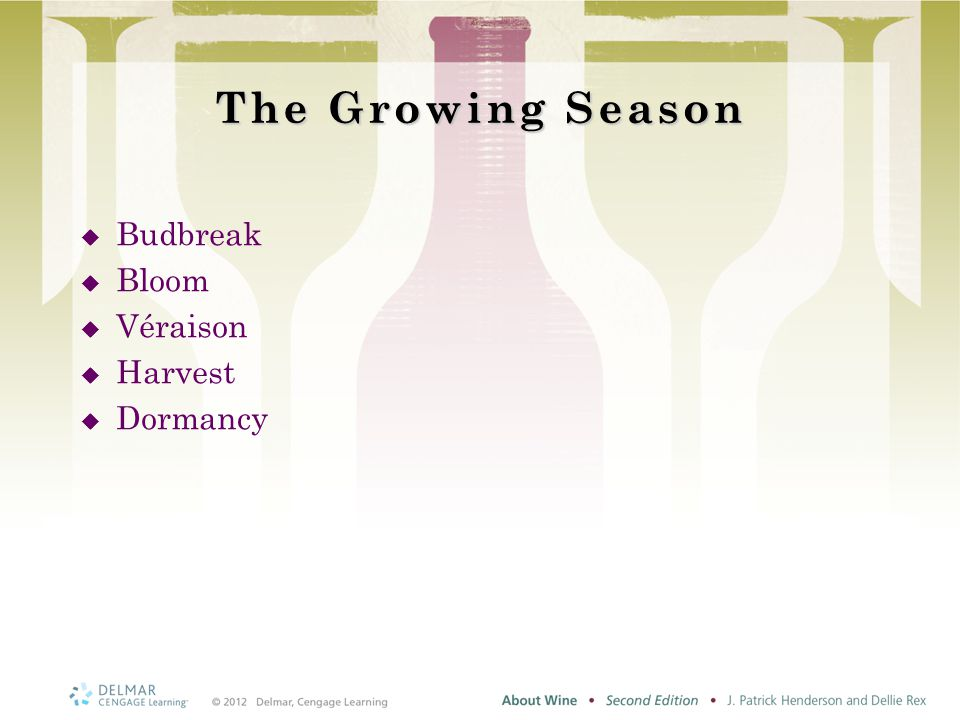 The Growing Season  Budbreak  Bloom  Véraison  Harvest  Dormancy