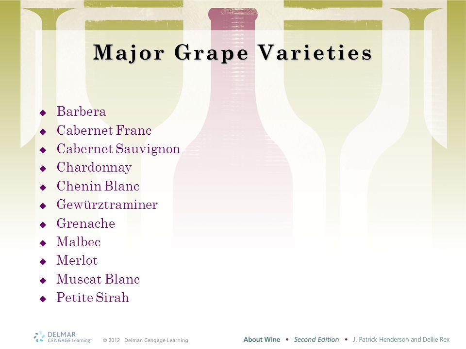 Major Grape Varieties  Barbera  Cabernet Franc  Cabernet Sauvignon  Chardonnay  Chenin Blanc  Gewürztraminer  Grenache  Malbec  Merlot  Muscat Blanc  Petite Sirah