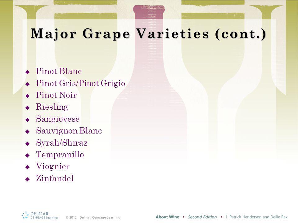 Major Grape Varieties (cont.)  Pinot Blanc  Pinot Gris/Pinot Grigio  Pinot Noir  Riesling  Sangiovese  Sauvignon Blanc  Syrah/Shiraz  Tempranillo  Viognier  Zinfandel