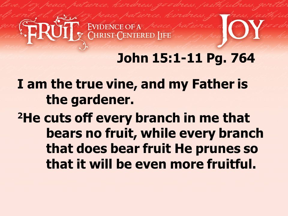 John 15:1-11 Pg. 764 I am the true vine, and my Father is the gardener. 2 He cuts off every branch in me that bears no fruit, while every branch that