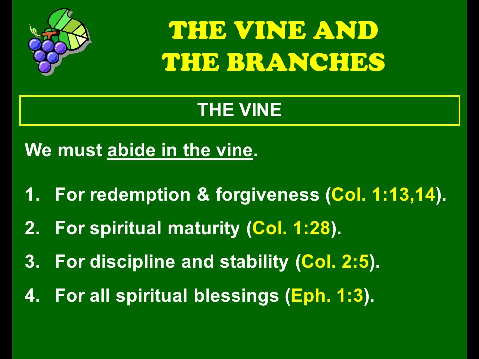 THE VINE THE VINE AND THE BRANCHES We must abide in the vine. 1.For redemption & forgiveness (Col. 1:13,14). 2.For spiritual maturity (Col. 1:28). 3.F