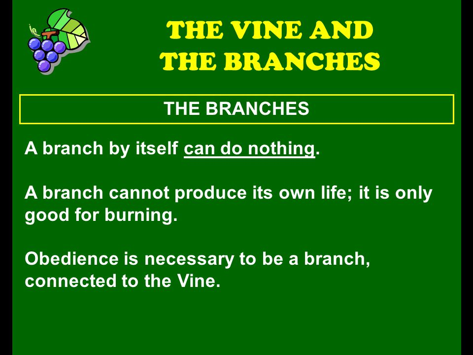 THE BRANCHES THE VINE AND THE BRANCHES A branch by itself can do nothing.