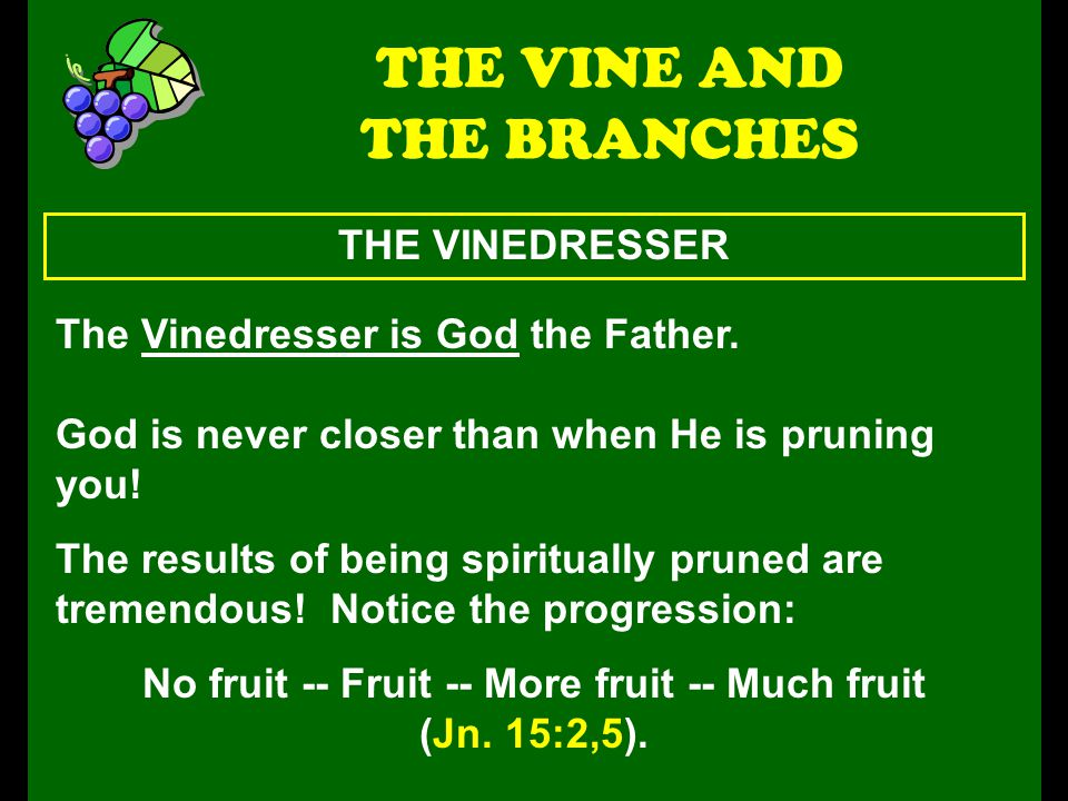 THE FRUIT THE VINE AND THE BRANCHES Fruit is not results.