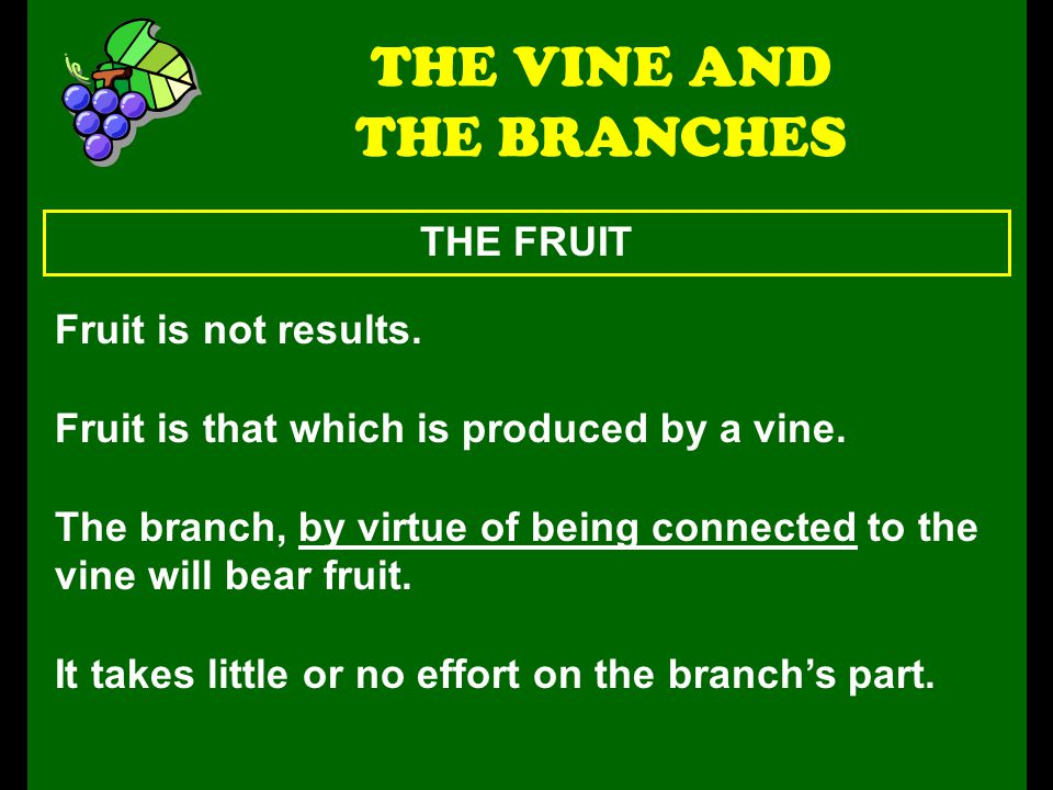 THE FRUIT THE VINE AND THE BRANCHES Fruit is not results. Fruit is that which is produced by a vine. The branch, by virtue of being connected to the v