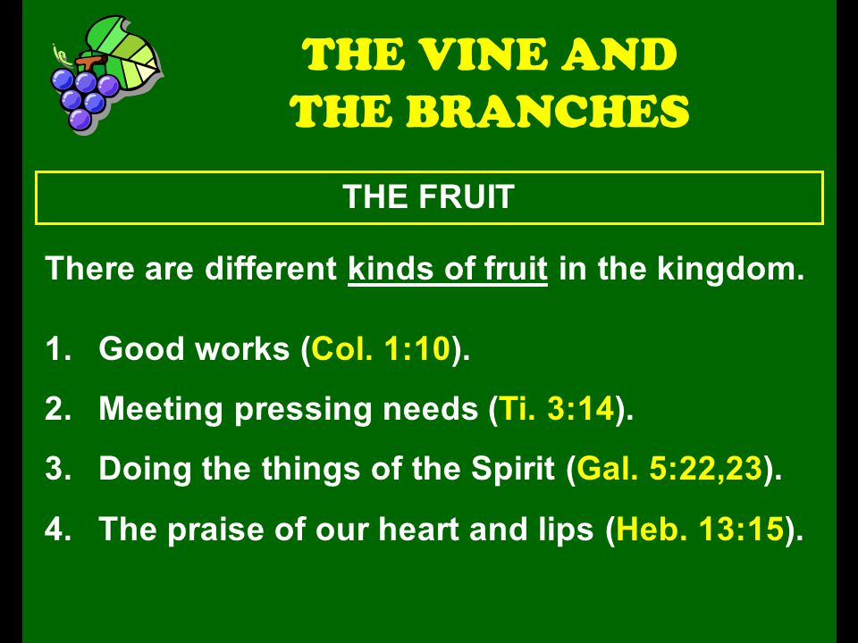 THE FRUIT THE VINE AND THE BRANCHES There are different kinds of fruit in the kingdom.