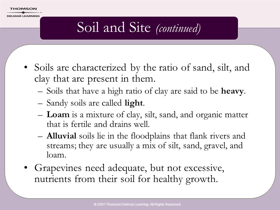 © 2007 Thomson Delmar Learning. All Rights Reserved. Soil and Site (continued) Soils are characterized by the ratio of sand, silt, and clay that are p