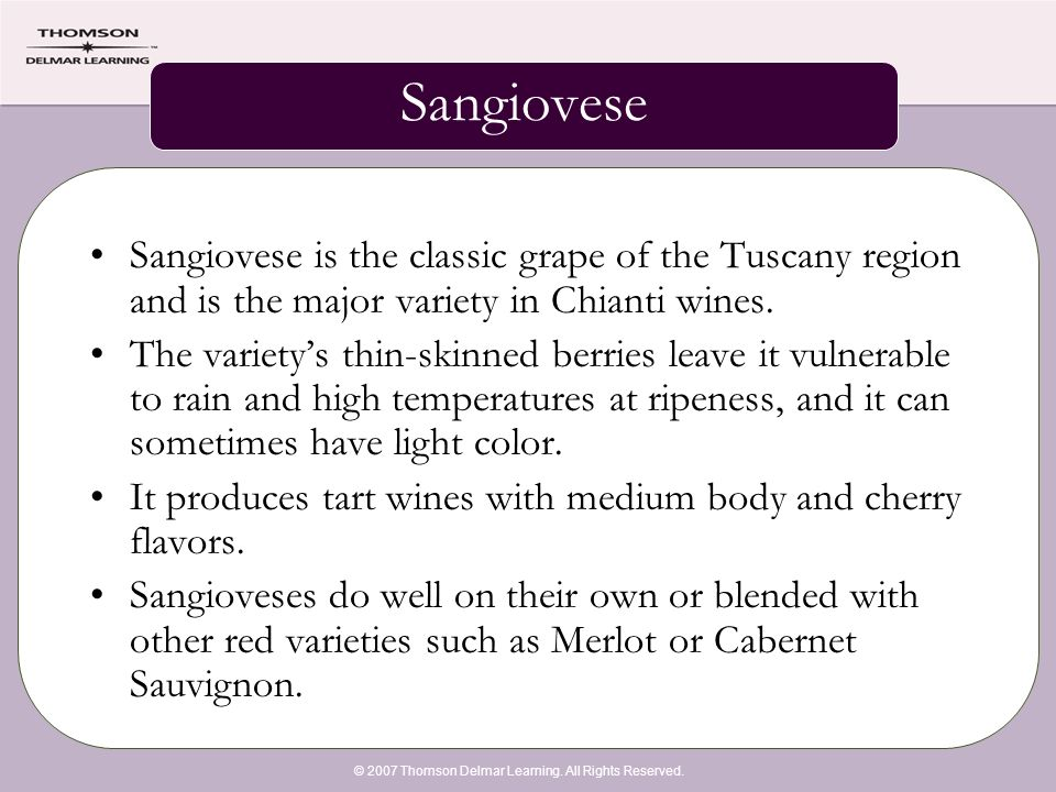 © 2007 Thomson Delmar Learning. All Rights Reserved. Sangiovese Sangiovese is the classic grape of the Tuscany region and is the major variety in Chia