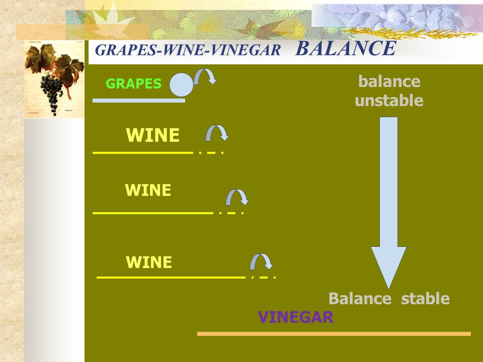 GRAPES VINEGAR WINE balance unstable Balance stable GRAPES-WINE-VINEGAR BALANCE