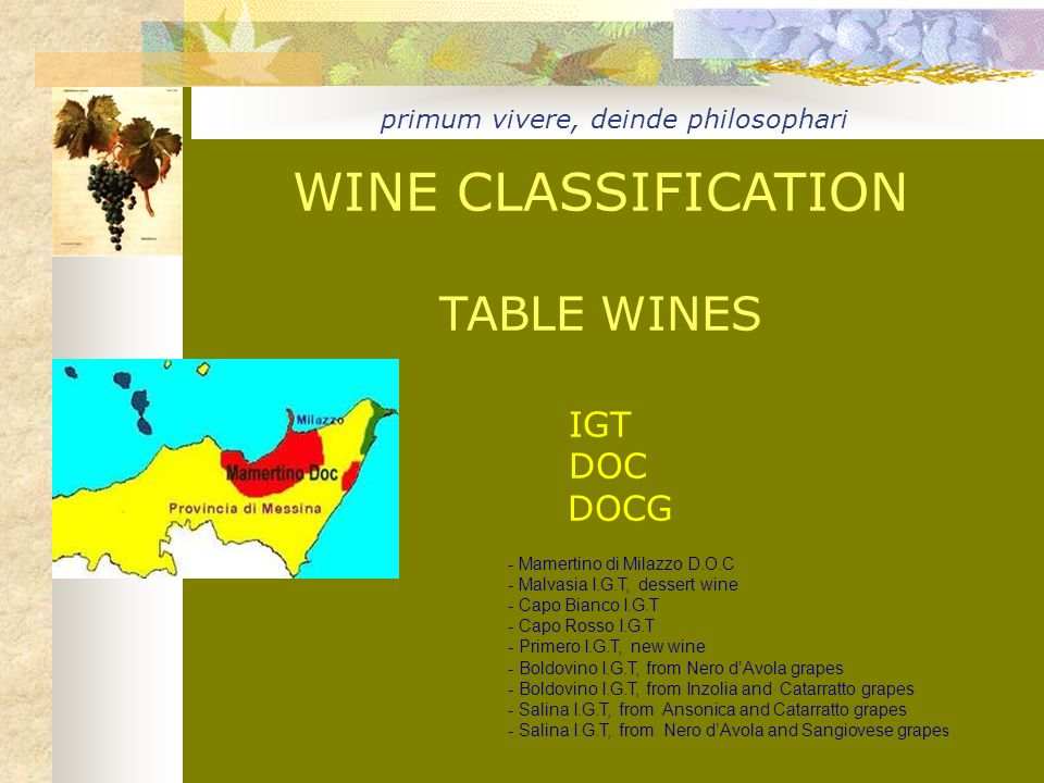 WINE CLASSIFICATION TABLE WINES IGT DOC DOCG primum vivere, deinde philosophari - Mamertino di Milazzo D.O.C - Malvasia I.G.T, dessert wine - Capo Bianco I.G.T - Capo Rosso I.G.T - Primero I.G.T, new wine - Boldovino I.G.T, from Nero d'Avola grapes - Boldovino I.G.T, from Inzolia and Catarratto grapes - Salina I.G.T, from Ansonica and Catarratto grapes - Salina I.G.T, from Nero d'Avola and Sangiovese grape s