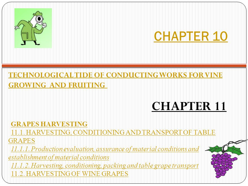 CHAPTER 10 TECHNOLOGICAL TIDE OF CONDUCTING WORKS FOR VINE GROWING AND FRUITING CHAPTER 11 GRAPES HARVESTING 11.1.