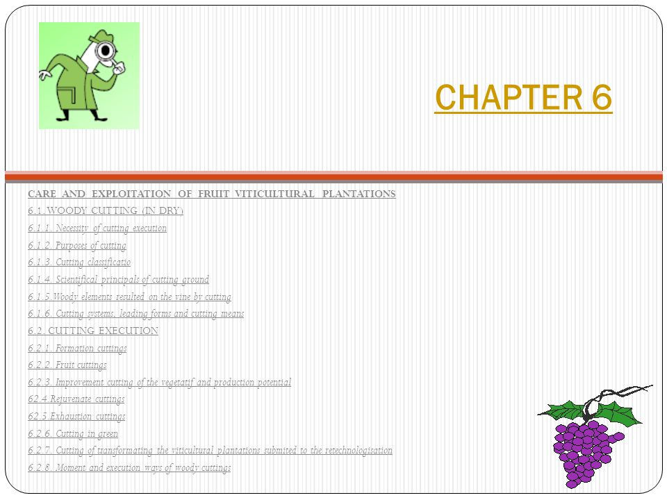 CHAPTER 6 CARE AND EXPLOITATION OF FRUIT VITICULTURAL PLANTATIONS 6.1.