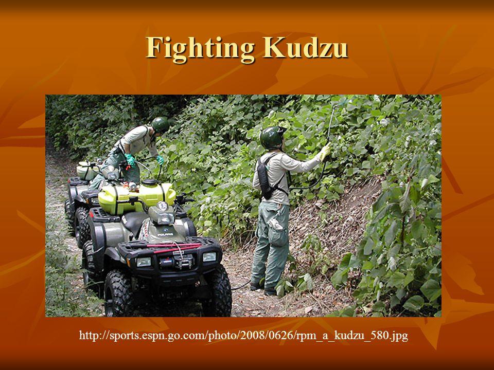 Fighting Kudzu http://sports.espn.go.com/photo/2008/0626/rpm_a_kudzu_580.jpg