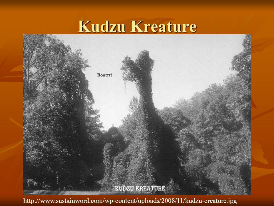 Kudzu Kreature http://www.sustainword.com/wp-content/uploads/2008/11/kudzu-creature.jpg