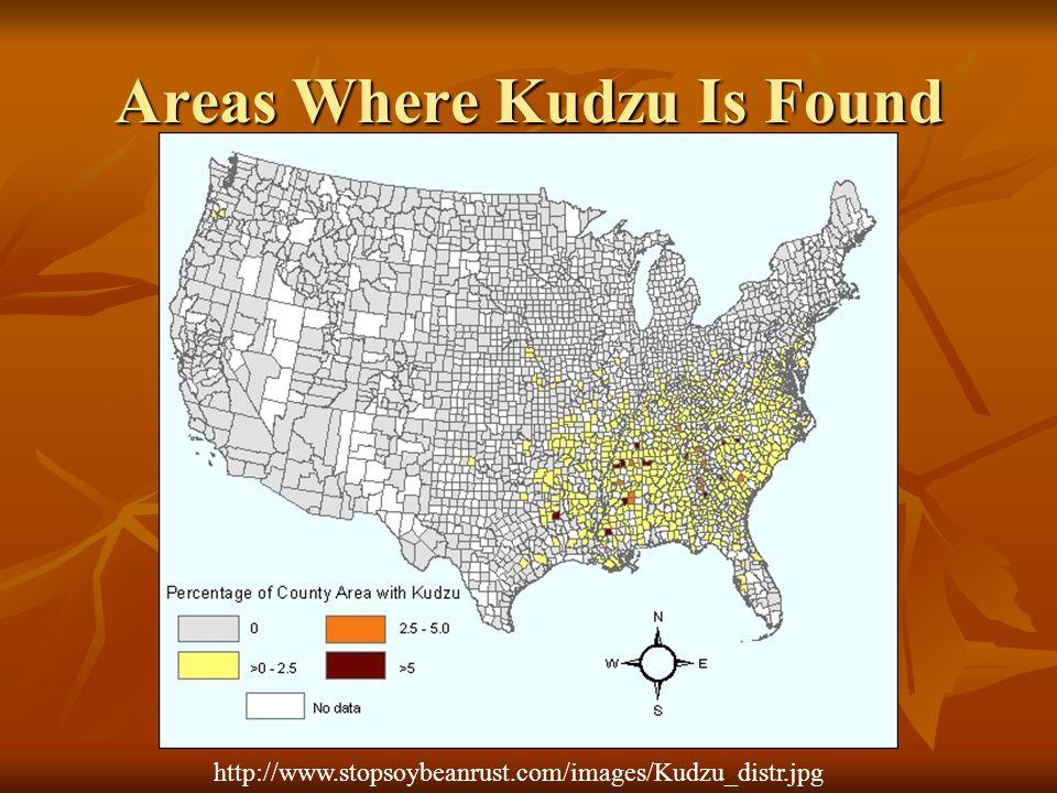 Areas Where Kudzu Is Found http://www.stopsoybeanrust.com/images/Kudzu_distr.jpg