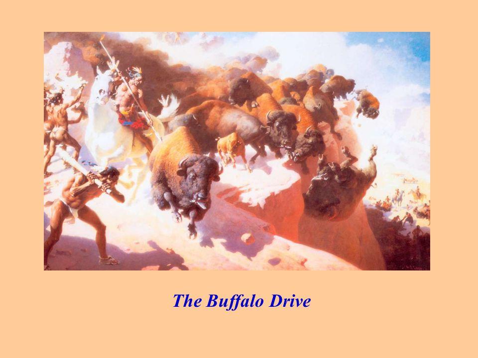The Buffalo Drive