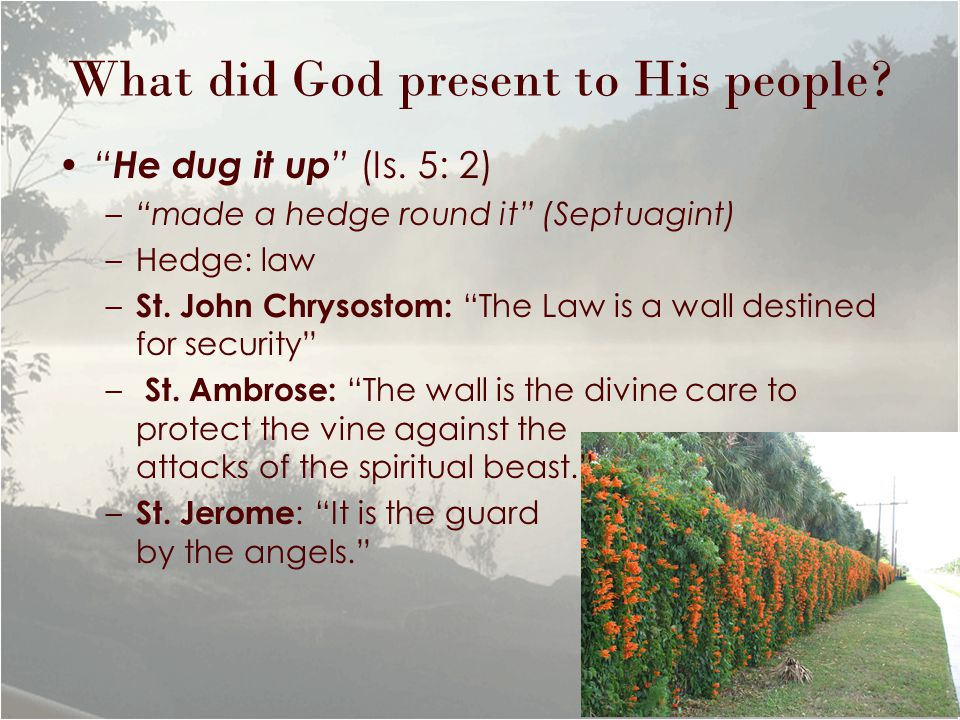 What did God present to His people. He dug it up (Is.