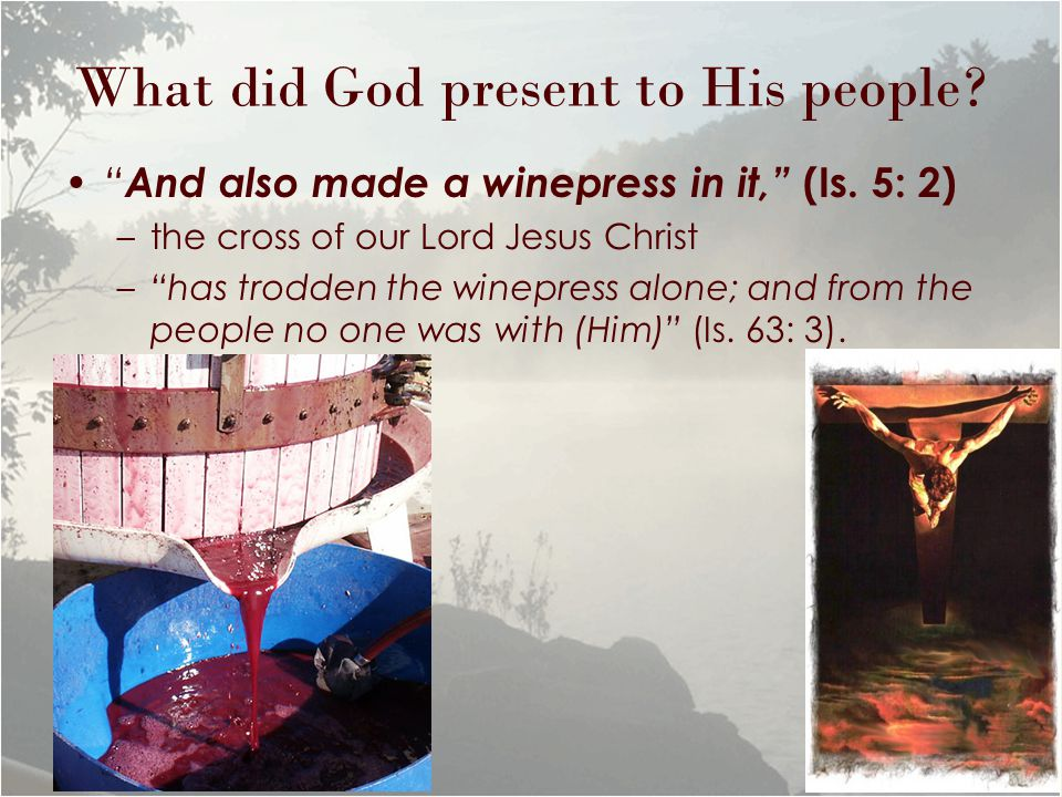 "What did God present to His people? "" And also made a winepress in it,"" (Is. 5: 2) –the cross of our Lord Jesus Christ –""has trodden the winepress alo"