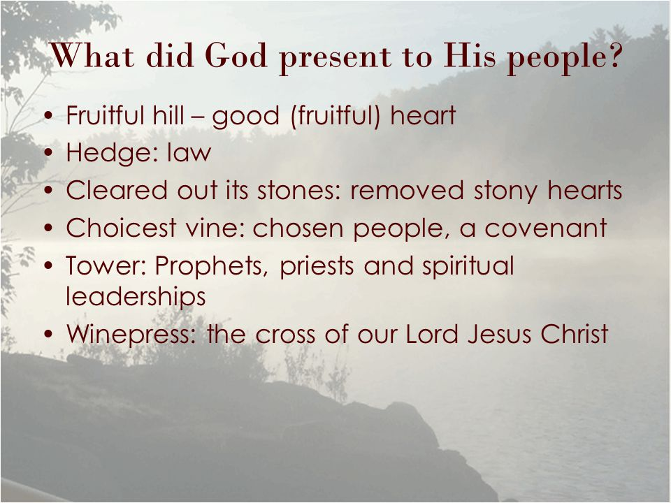 What did God present to His people? Fruitful hill – good (fruitful) heart Hedge: law Cleared out its stones: removed stony hearts Choicest vine: chose