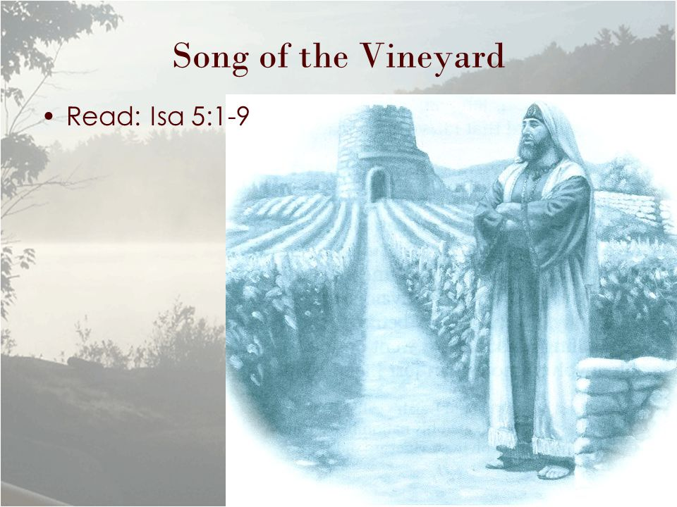 Song of the Vineyard Read: Isa 5:1-9