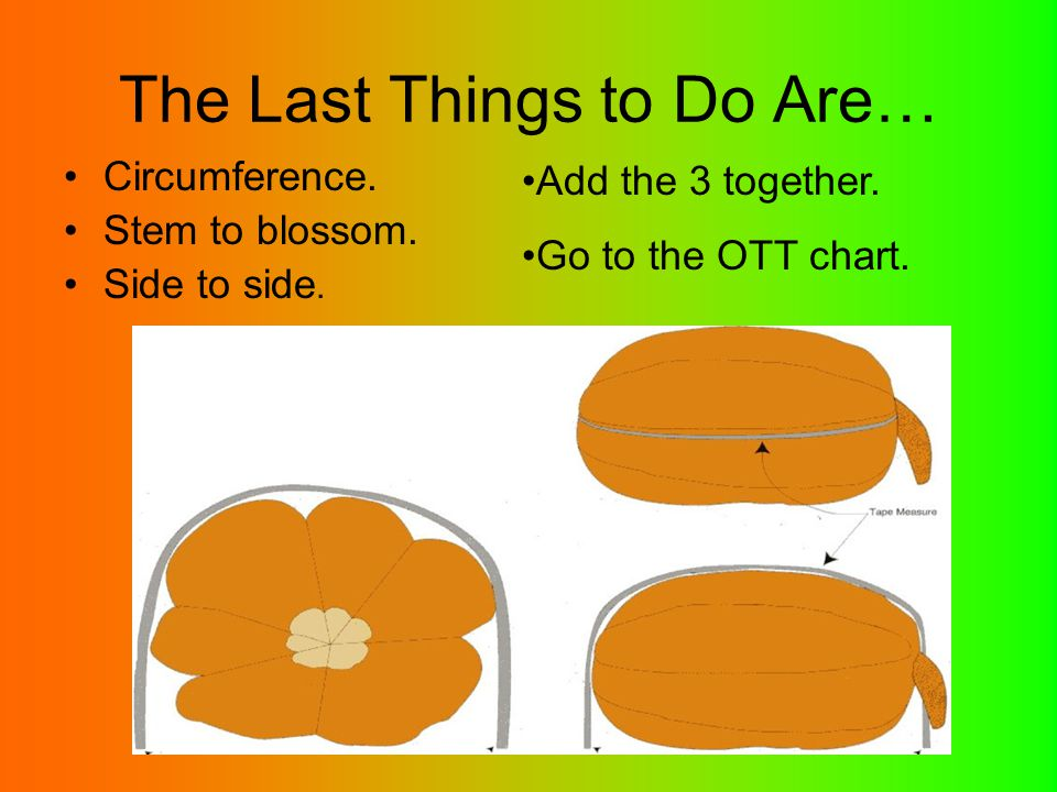 The Last Things to Do Are… Circumference. Stem to blossom. Side to side. Add the 3 together. Go to the OTT chart.