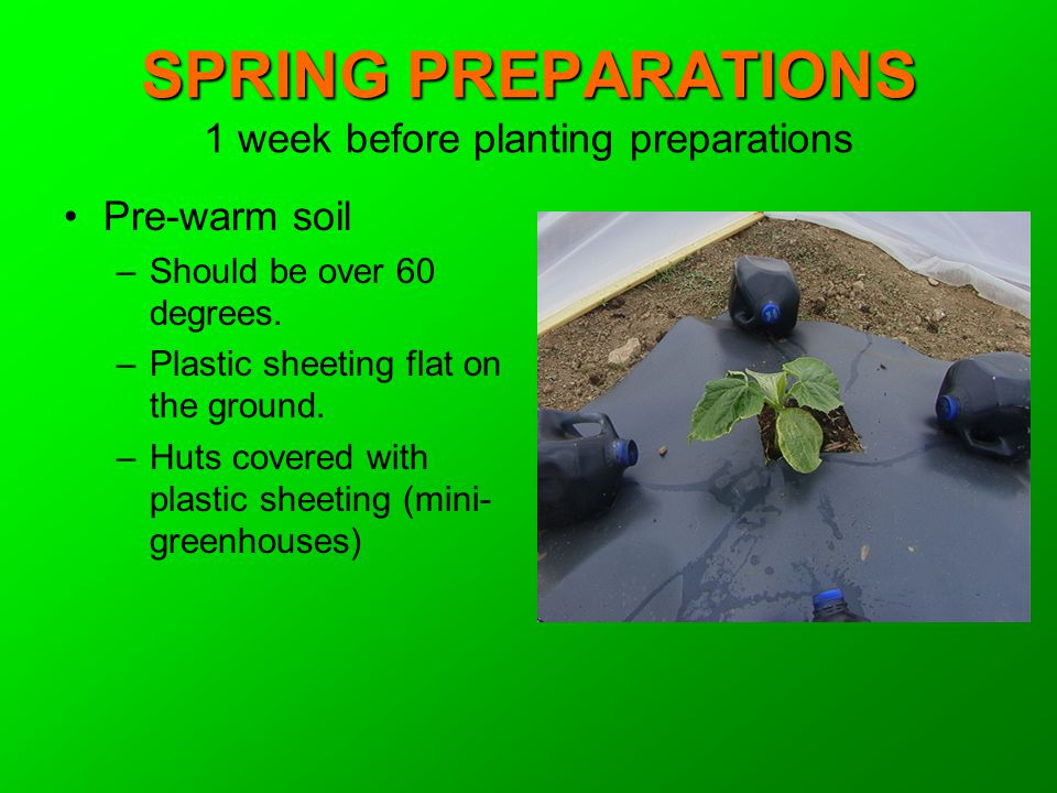 SPRING PREPARATIONS SPRING PREPARATIONS 1 week before planting preparations Pre-warm soil –Should be over 60 degrees. –Plastic sheeting flat on the gr