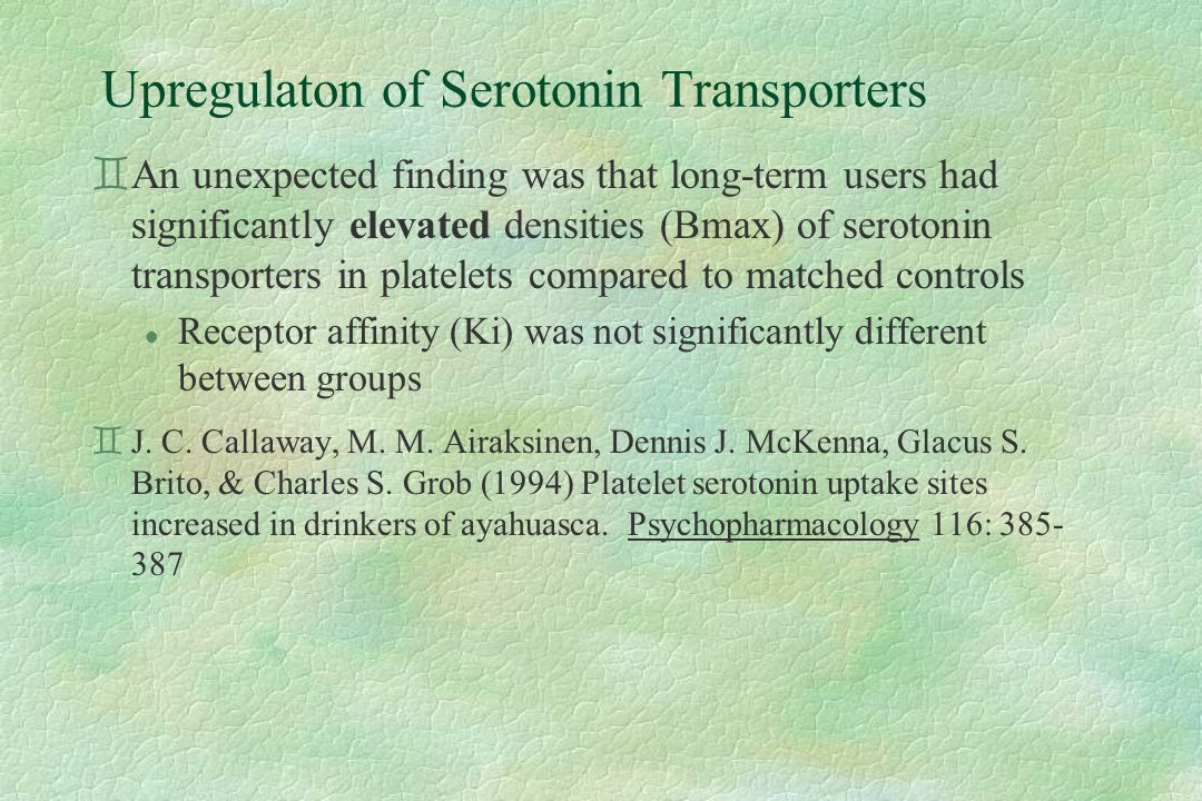 Upregulaton of Serotonin Transporters `An unexpected finding was that long-term users had significantly elevated densities (Bmax) of serotonin transporters in platelets compared to matched controls l Receptor affinity (Ki) was not significantly different between groups `J.