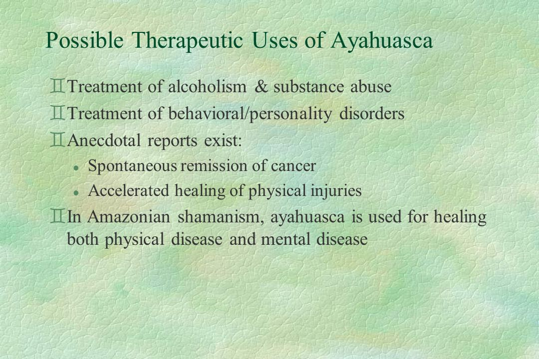 Possible Therapeutic Uses of Ayahuasca `Treatment of alcoholism & substance abuse `Treatment of behavioral/personality disorders `Anecdotal reports exist: l Spontaneous remission of cancer l Accelerated healing of physical injuries `In Amazonian shamanism, ayahuasca is used for healing both physical disease and mental disease