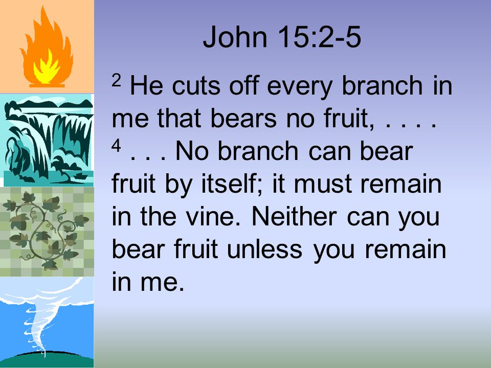 John 15:2-5 2 He cuts off every branch in me that bears no fruit,....