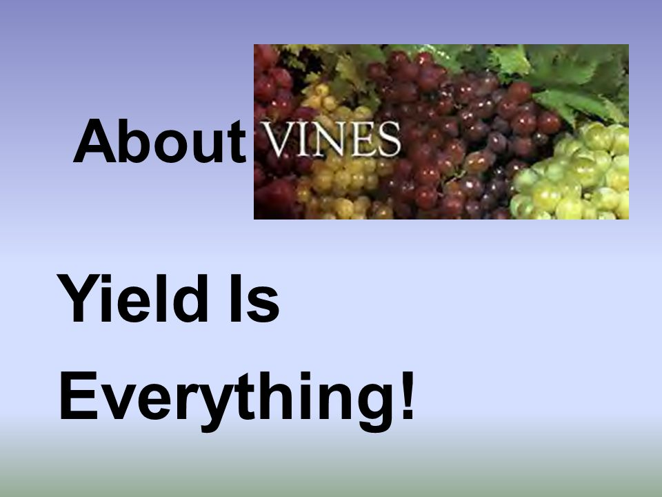 Yield Is Everything! About