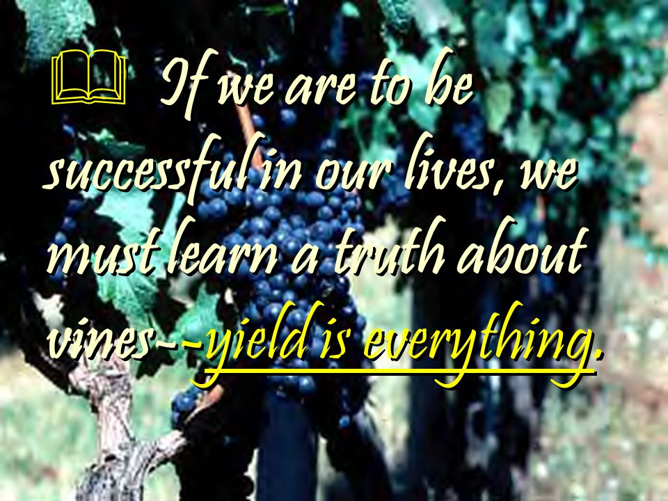  If we are to be successful in our lives, we must learn a truth about vines--yield is everything.