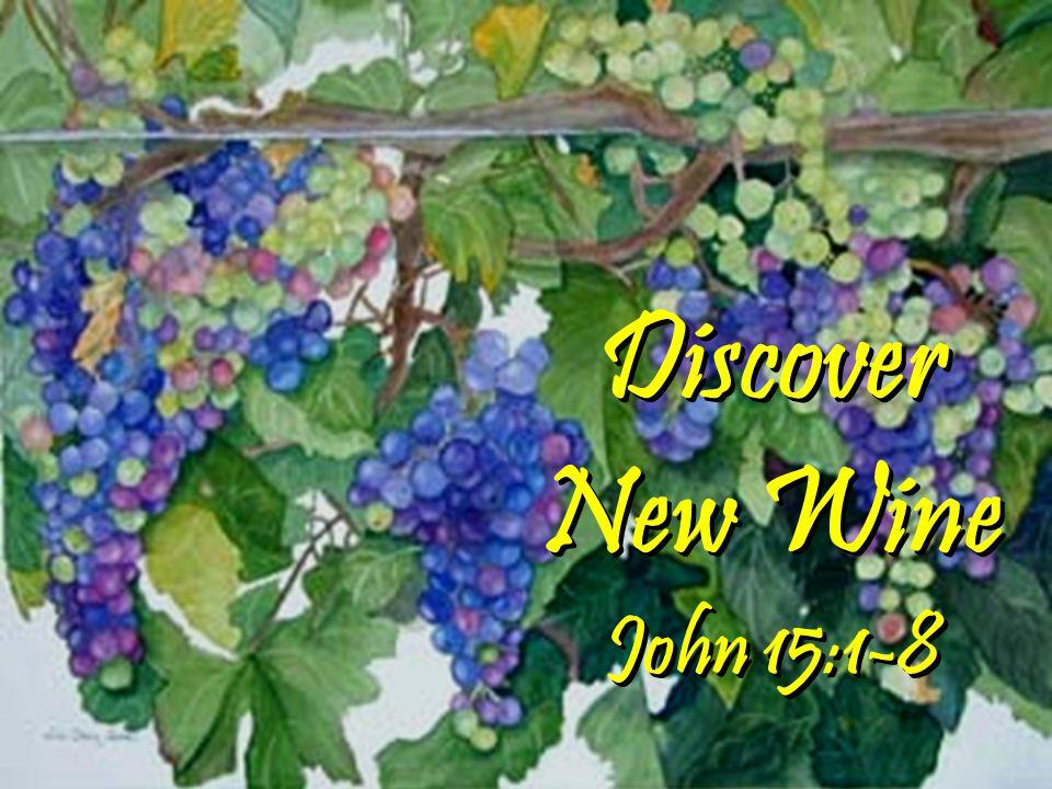 Discover New Wine John 15:1-8 Discover New Wine John 15:1-8