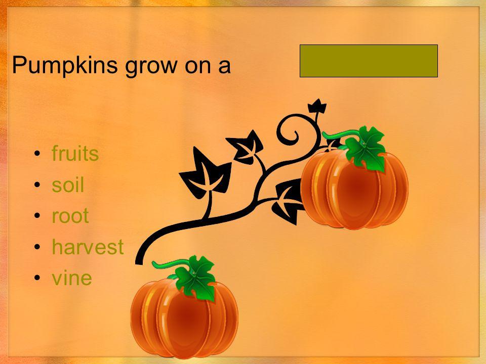 Pumpkins grow on a. fruits soil root harvest vine
