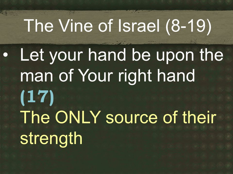The Vine of Israel (8-19) Let your hand be upon the man of Your right hand (17) The ONLY source of their strength