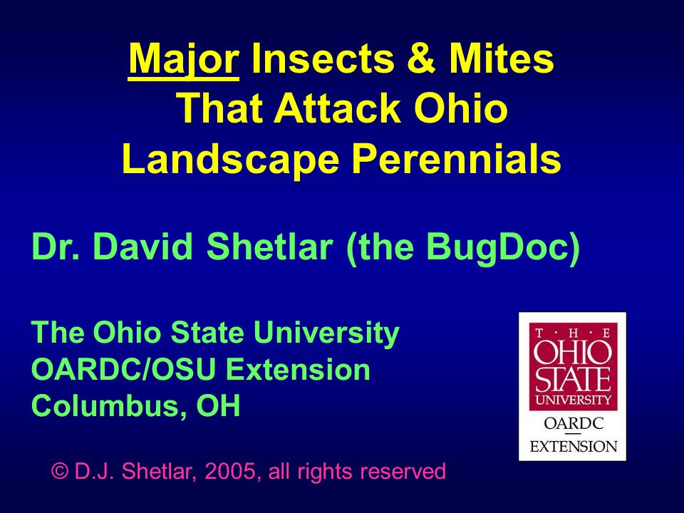 Major Insects & Mites That Attack Ohio Landscape Perennials  Plant bugs, Aphids & Psyllids  Sawflies & Caterpillars  Twospotted spider mite  Leafminers  Slugs (not arthropods!)