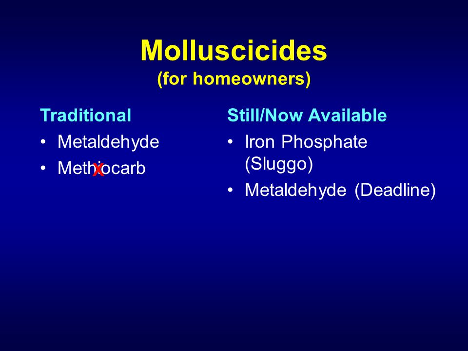 Molluscicides (for homeowners) Traditional Metaldehyde Methiocarb Still/Now Available Iron Phosphate (Sluggo) Metaldehyde (Deadline) X