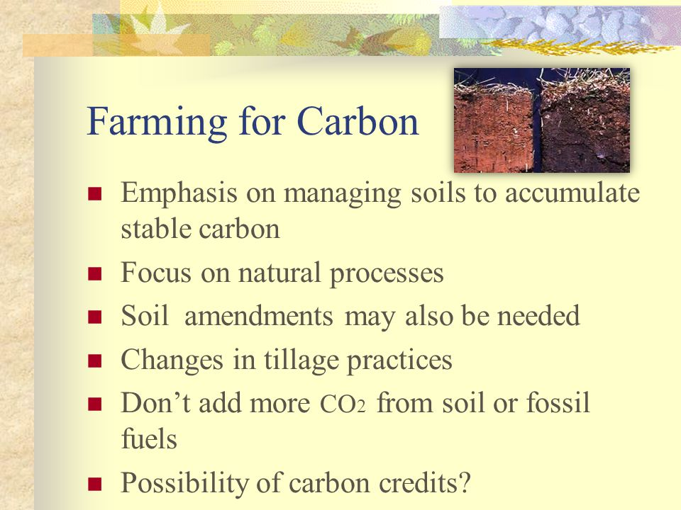 Farming for Carbon Emphasis on managing soils to accumulate stable carbon Focus on natural processes Soil amendments may also be needed Changes in tillage practices Don't add more CO 2 from soil or fossil fuels Possibility of carbon credits?