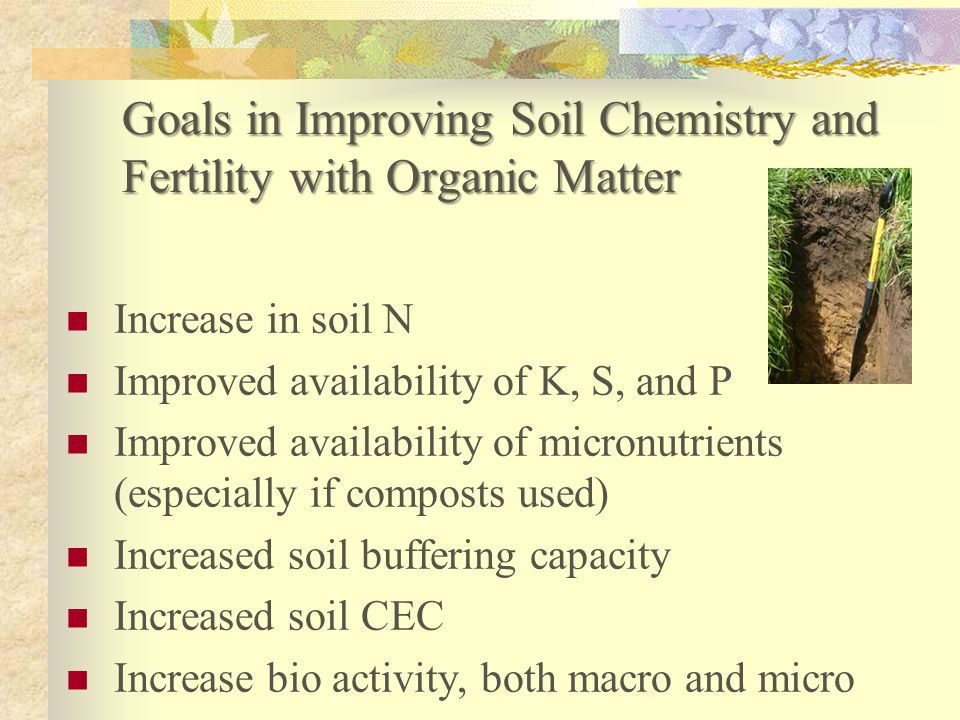 Goals in Improving Soil Chemistry and Fertility with Organic Matter Increase in soil N Improved availability of K, S, and P Improved availability of m