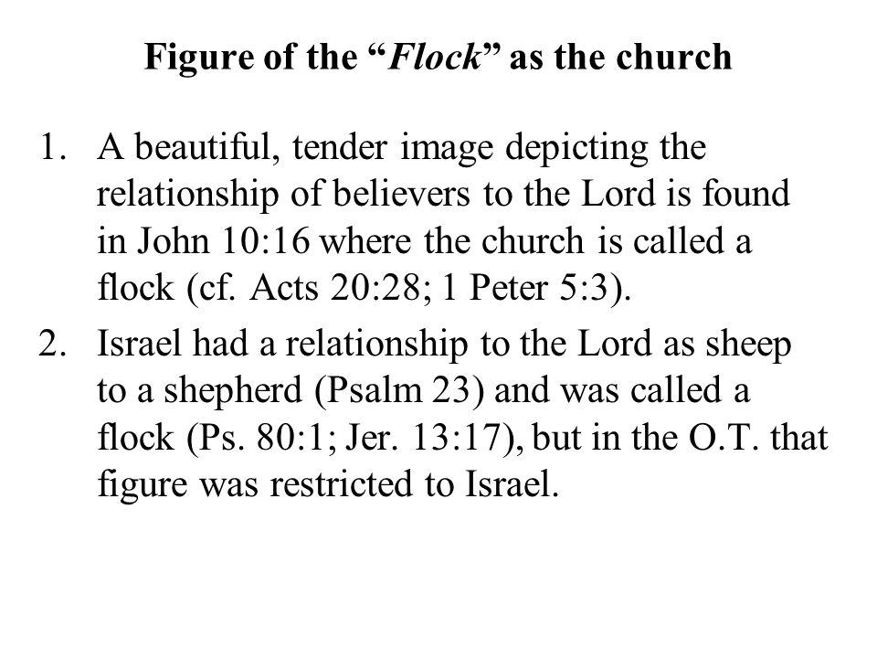 """Figure of the """"Flock"""" as the church 1.A beautiful, tender image depicting the relationship of believers to the Lord is found in John 10:16 where the c"""