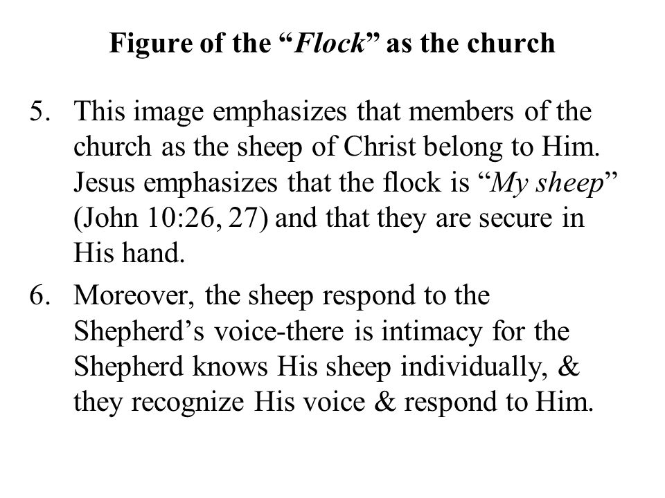 Figure of the Flock as the church 5.This image emphasizes that members of the church as the sheep of Christ belong to Him.