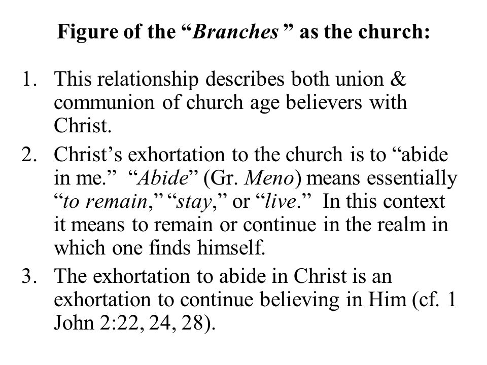 """Figure of the """"Branches """" as the church: 1.This relationship describes both union & communion of church age believers with Christ. 2.Christ's exhortat"""