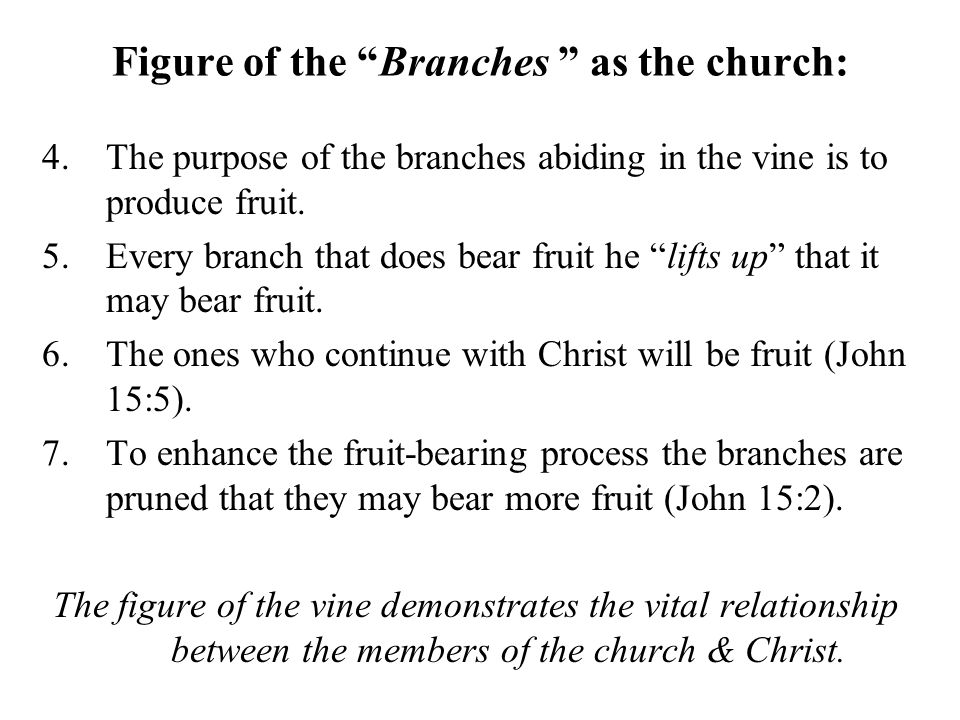 Figure of the Branches as the church: 4.The purpose of the branches abiding in the vine is to produce fruit.