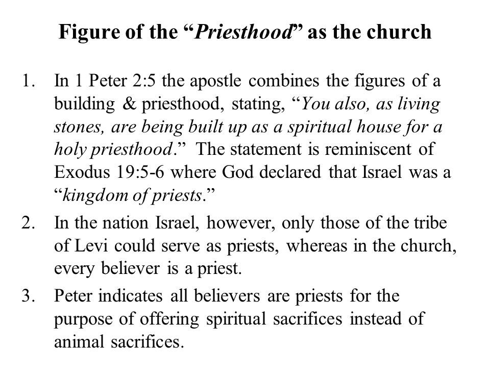Figure of the Priesthood as the church 1.In 1 Peter 2:5 the apostle combines the figures of a building & priesthood, stating, You also, as living stones, are being built up as a spiritual house for a holy priesthood. The statement is reminiscent of Exodus 19:5-6 where God declared that Israel was a kingdom of priests. 2.In the nation Israel, however, only those of the tribe of Levi could serve as priests, whereas in the church, every believer is a priest.