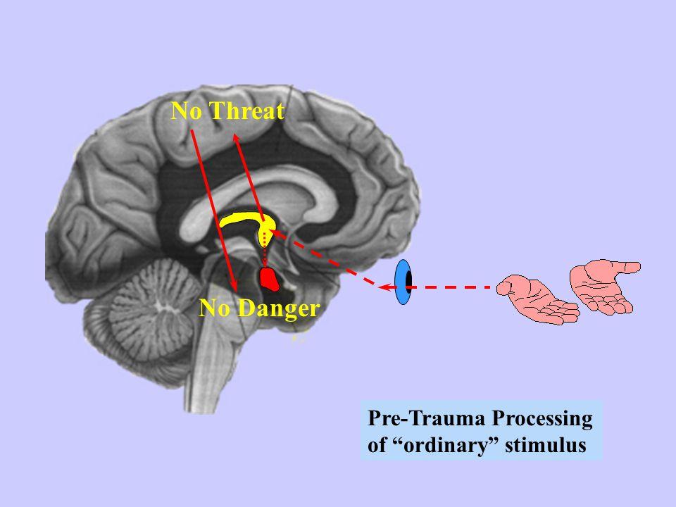 """No Threat No Danger Pre-Trauma Processing of """"ordinary"""" stimulus"""