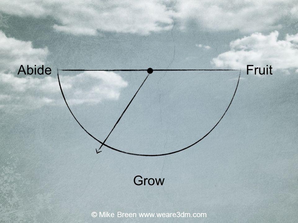 Abide Grow Fruit © Mike Breen www.weare3dm.com