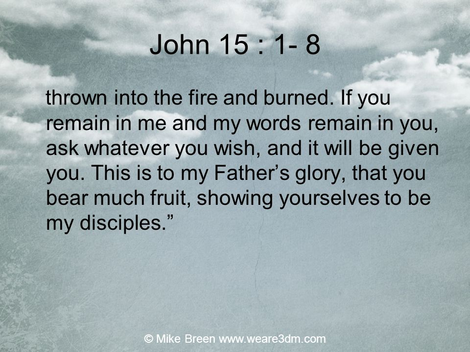 John 15 : 4 Remain in me, and I will remain in you.
