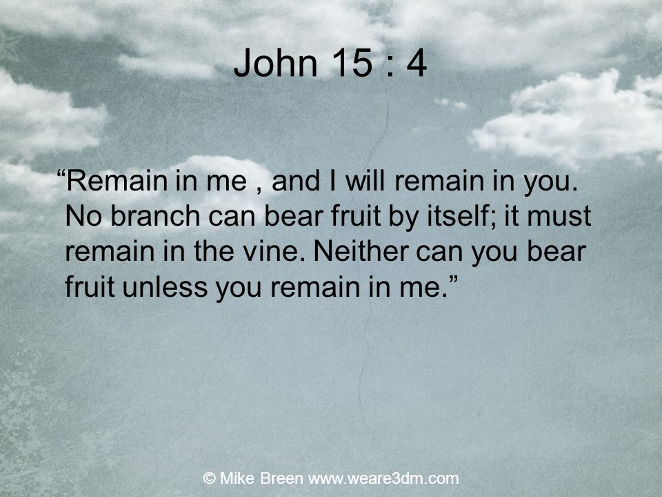 """John 15 : 4 """"Remain in me, and I will remain in you. No branch can bear fruit by itself; it must remain in the vine. Neither can you bear fruit unless"""